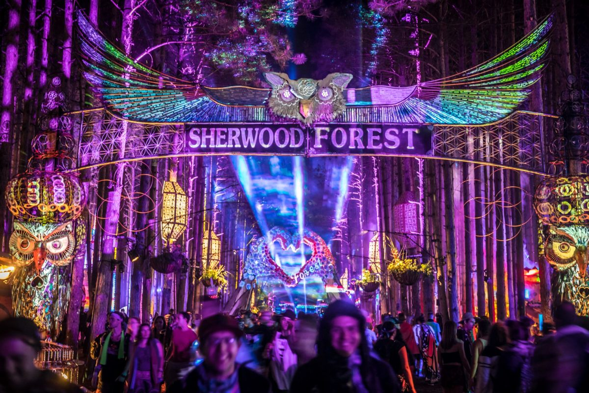 "Electric Forest lance ""Home Projects: The Forest Family Camp In"" – EDM.com"