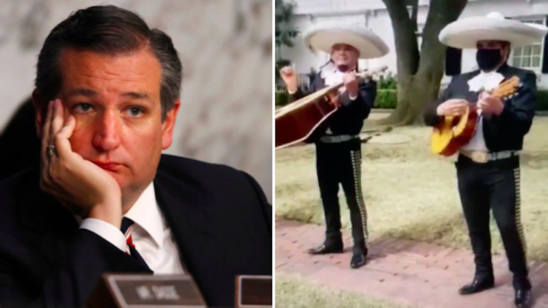 Regardez un Mariachi Band Troll Ted Cruz devant sa maison de Houston